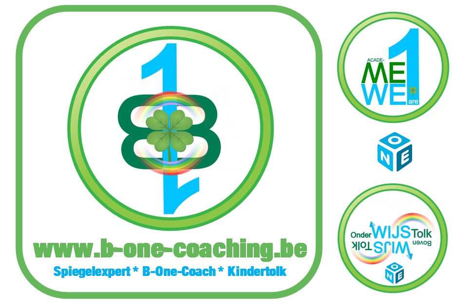 b-one-coaching15