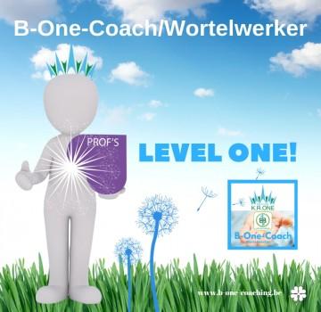 B-One-Coach (6)